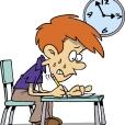 Wyniki egzaminów zawodowych